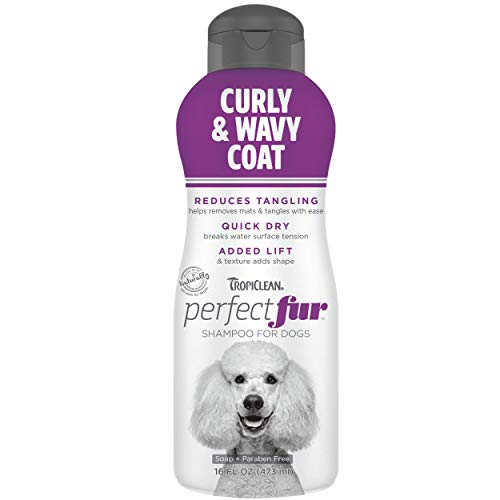 TropiClean PerfectFur Curly & Wavy Coat Shampoo for Dogs, 16oz - Use with Slicker Brush for Thick, Wiry Breeds Like Poodles - Helps Loosen Mats & Tangles - Quick Dry - Made in USA - Naturally Derived