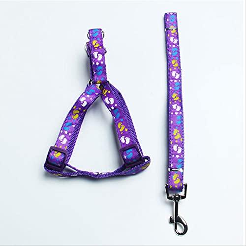 Correa de perro para mascotas con correa de pecho para perros grandes, medianos y pequeños, ancho 1,0 x 120 cm, color morado
