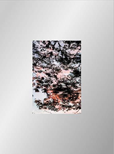 Yoshinori Mizutani - Hdr_nature