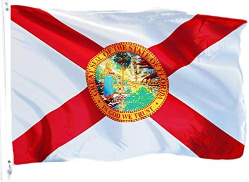 G128 Florida Flag 3x5 ft Printed Flag 2 Brass Grommets Quality Polyester Flag Indoor Outdoor product image