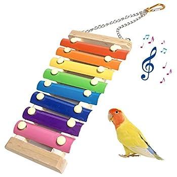 FOXNSK Jouets pour Oiseaux Jouet de Xylophone Poule en Bois 8 Touches Métalliques Suspensibles pour Poules Oiseau de Poulet de Compagnie Perroquet Oiseaux Moyens et Grands