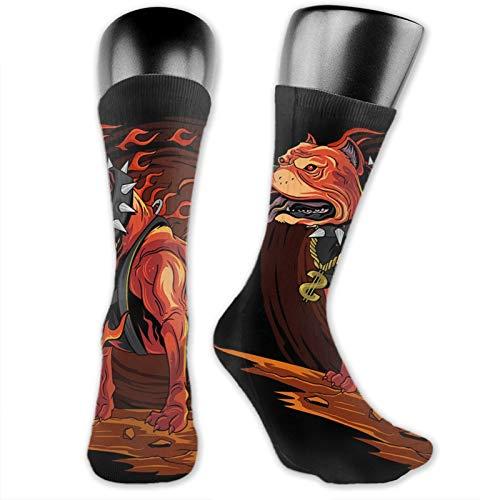 Dog Fire Pitbull From Hell Socks Novelty Sport Long Tube Socks For Mans Womens