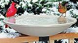 Allied Precision Industries (650) Heated Bird Bath with Mounting Bracket