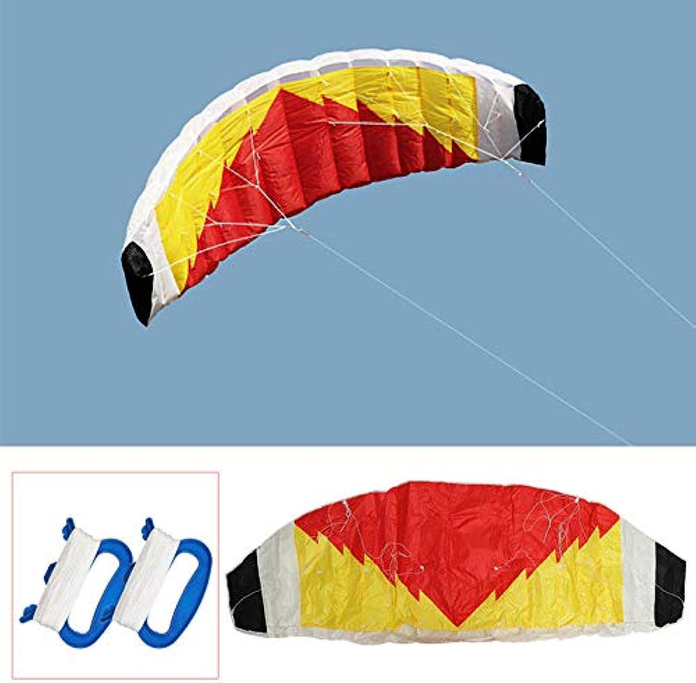 Anddod 2-Line Parafoil Stunt Kite 0.7 x 2m Parachute Sail Surfing Beach Nylon Fabric