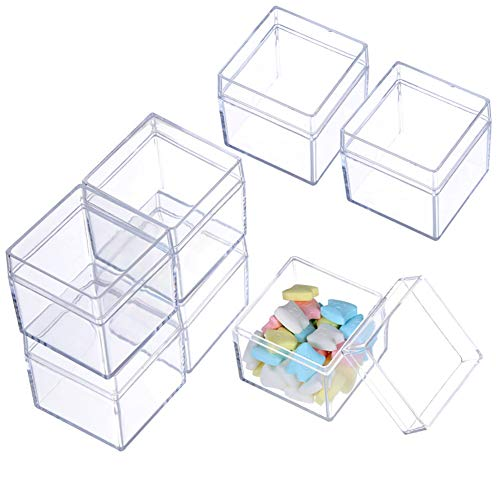 Beads Storage Containers,12 Pack Small Plastic Box with Hinged Lid,2x2x2 Inchs Square Clear Containers Box Case for Pills Herbs Tiny Bead Earring Jewerlry Finding and More