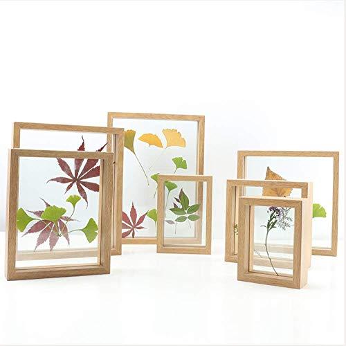 De nieuwe creatieve 3D-fotolijst van de glazen plant van de exemplarkist heeft het frame van het bord van de afbeelding van het blad van de boom geplaatst. 5inch