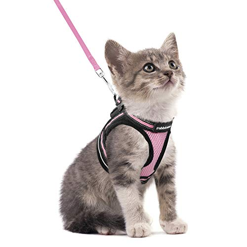 rabbitgoo Cat Harness and Leash Set for Walking Escape Proof, Adjustable Soft Kittens Vest with Reflective Strip for Cats, Step-in Comfortable Outdoor...