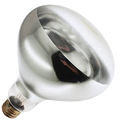 Industrial Performance 250 Watt BR40 Shatter Resistant Clear Heat Lamp