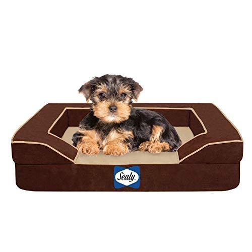 best dog bed for older dogs