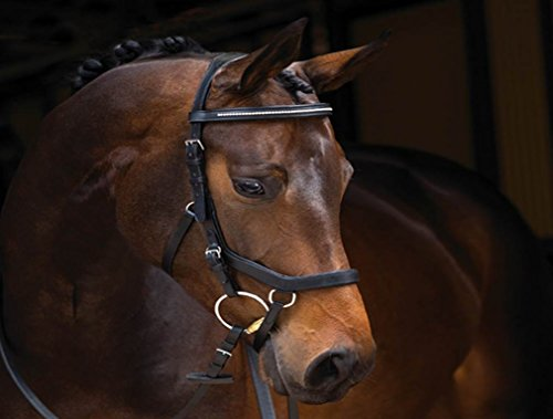 Rambo Micklem Diamond Comp. Bridle VB bk