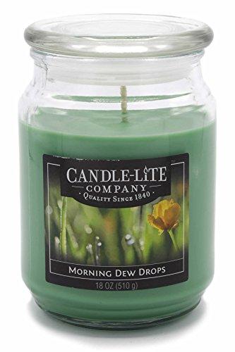 Candle Lite – Bougie parfumée dans Verre, de Morning Dew Drops 510 g, Vert, 10 x 10 x 14,5 cm