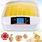 Sailnovo Incubadora Huevos Automática 56 Huevos con Pantalla Digital y Control Eficiente e Inteligente de Temperatura