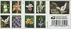 Wild Orchids Book of 20 Forever Postage Stamps Scott 5444