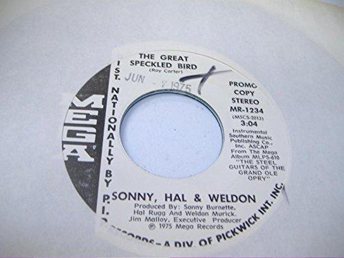 PETE HANLEY 45 RPM Ridin' Herd / Robin Hood