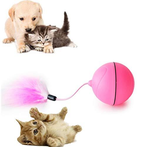 pzcvo Katzenspielzeug Maus Katzenspielzeug Beschäftigung Kätzchen-Spielwaren für Innenkatzen Katzen Zauberstab Katze Spielzeug Bälle Katzenfeder Spielzeug red