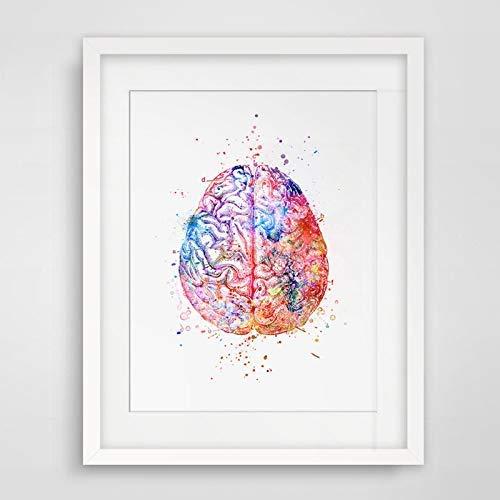 Watercolor Anatomy Brain Wall Art Decor Anatomical Brain Vintage Graphics Art Print Wall Hanging Original Design Brain Printed Artwork 8x10 inch No Frame