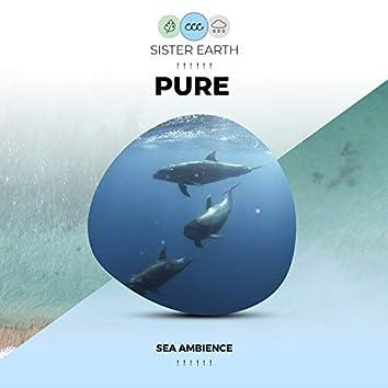 ! ! ! ! ! ! Pure Sea Ambience ! ! ! ! ! !