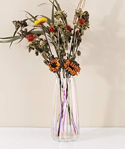 Lewondr Florero de Vidrio, 22CM Florero Decorativo Estilo Ins de Cristal Translúcido, Adecuado para Colocar Diferentes Tipos de Ramos de Flores en Oficina, Hogar, Cocina, Dormitorio – Colorido
