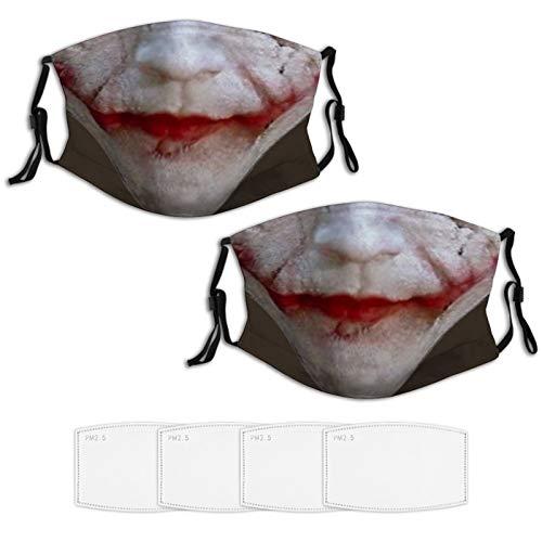 Nuberyl Joker Why So Serious 2 Stück Gesichtsmaske, Bandana, Balaclava Schal mit 4 Filtern, Nasenband, verstellbar, Unisex, langlebig, wiederverwendbar, hohe Qualität