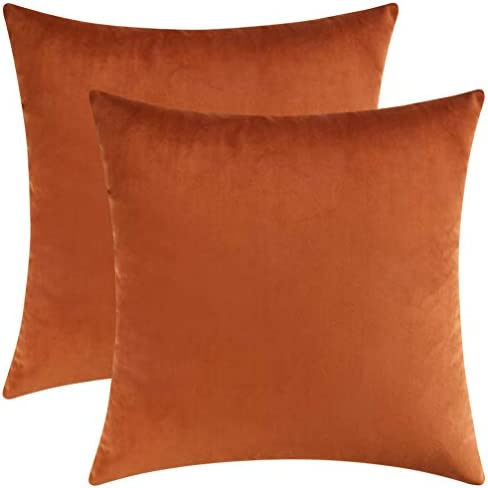 Best Mixhug Set of 2 Cozy Velvet Square Decorative Throw Pillow Covers for Couch and Bed, Burnt Orange, 1