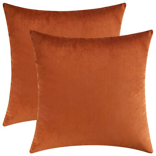 Mixhug Set of 2 Cozy Velvet Square Decorative Throw Pillow Covers for Couch and Bed, Burnt Orange, 18 x 18 Inches
