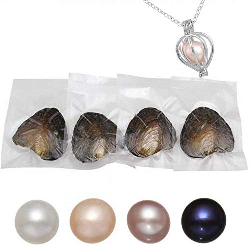 Real Round Oysters with Pearl Inside Shell Pearl Beads 7-8mm/4Pcs with DIY Necklace Pearl Kit Gift for Women
