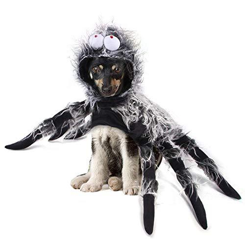 Suppemie - Disfraz de araña para perros pequeños y medianos