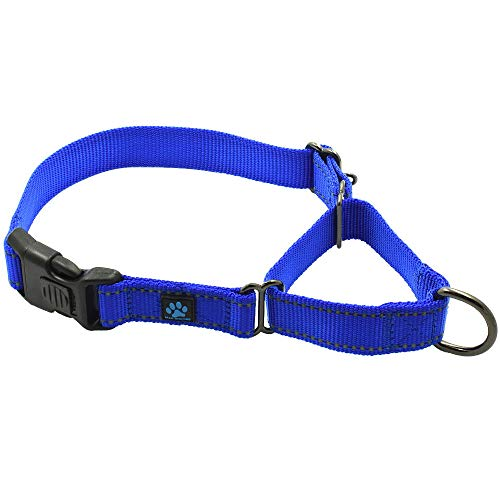 Max and Neo Nylon Martingale Collar - We Donate a Collar to a Dog Rescue for Every Collar Sold (Medium, Blue)