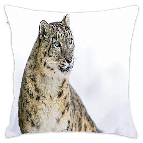 Snow Leopard Big Cat Cotton Square Throw Pillow Cushion Sofa Home Decor Accent Pillowcase Slip Encasement 18x18 Inches