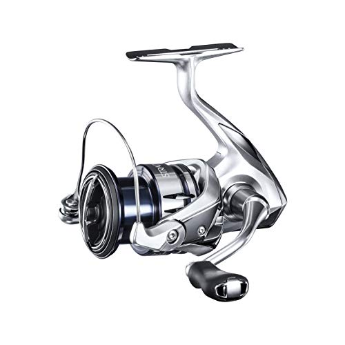 Shimano ST2500HGFL Stradic 2500 FL Spinning Reel, Ambi, 6BB + 1RB