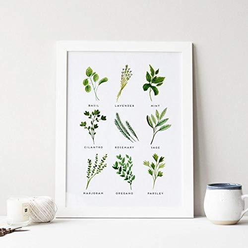 LLXHG kruiden canvasdruk en poster aquarel basilicum oregano salie koriander canvas schilderij Botanische afbeelding keuken muurkunst decor-21X30cm geen lijst