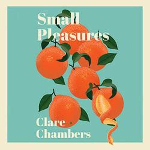 Couverture de Small Pleasures