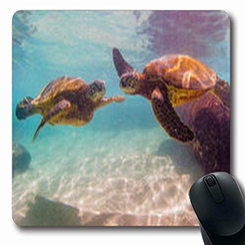 Luancrop Mousepads Schnorchel Hawaiian Green Sea Turtle Paradise Cruising Warme Wildlife Aloha Natur Ocean Oblong Gaming Mouse Pad rutschfeste Gummimatte