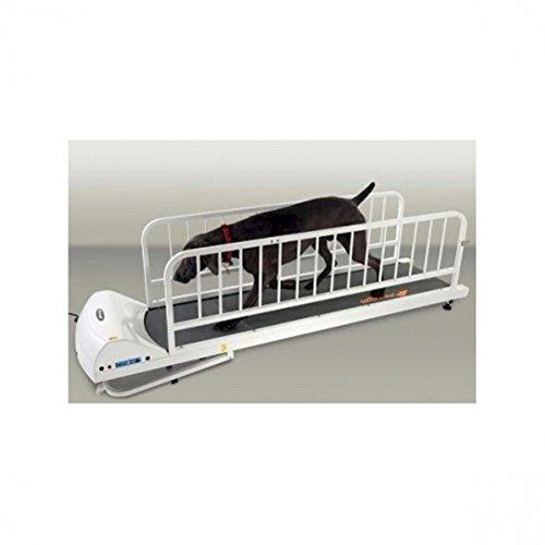 GOPET PetRun PR725 Dog Treadmill Indoor...