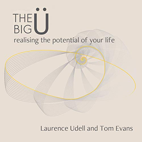 The Big Ü cover art