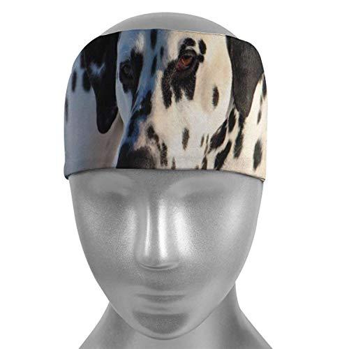 HFHY Dalmatiner Dalmatiner Hund Schnee Soft Sports Stirnbänder, Wicking Stretchy Schnelltrocknend Atmungsaktives Schweißband, Rutschfeste Absorbierende Feuchtigkeit Elastisches Stirnband für Männer Fr