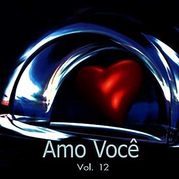 Amo Você Vol. 12