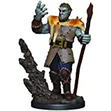 Nolzurs D&D Icons of The Realms: Premium Painted Miniatures - Male Firbolg Druid