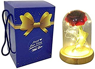 Agywell Beauty and The Beast Rose in Glass Dome with LED Light Gift Box Enchanted Red Best for Girls Valentines Day Birthday Party Present Wedding Decor