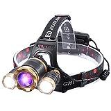 Headlamp, UV Blacklight Headlamp,5000 Lumens Led Rechargeable Headlight,4 Modes Purple Light, Ideal for Night Fishing, Detecting-Scorpions, Car Oil, Pet Urine, Stains, Fake Money, HVAC Repair