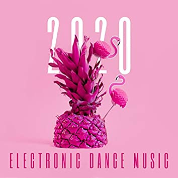 2020 Electronic Dance Music: Clean Tropical Summer Vibe Playlist