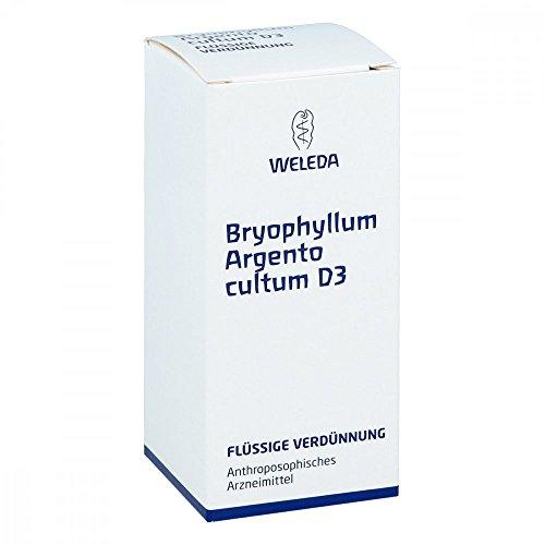 Bryophyllum Argento Cultum D 3 Dilution, 50 ml