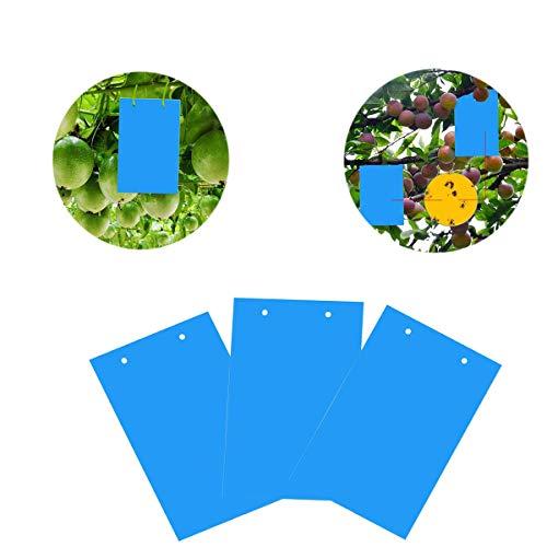 40 Sticker, Gelbtafeln und Blautafeln Fliegenfallen Klebrige Insektenfalle - 3