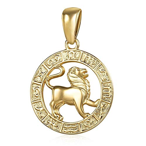 DERFX 12 Zodiac Sign Constellations Pendants Necklaces For Women Men Stainless Steel Jewelry Fashion Birthday Gifts (Metal Color : GP361 Leo)