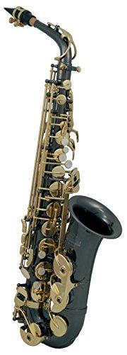 Roy Benson RB700603 - Saxofón Alto Mib AS-202K, estuche ligero rectangular, color antracita