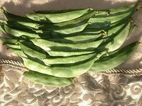 Priya Papdi beans seed packet