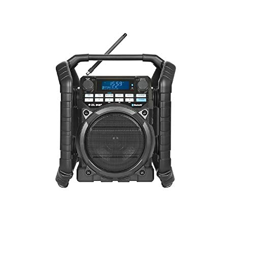 Perfectpro TEAMPLAYER Portátil Digital Negro - Radio (Portátil, Digital,...