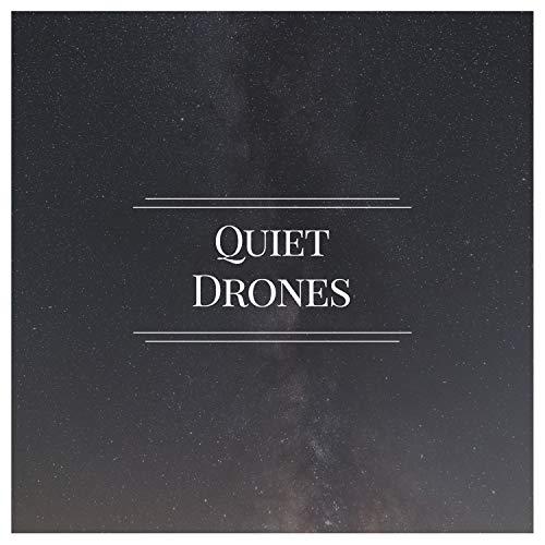 Quiet Drones, Vol. 2