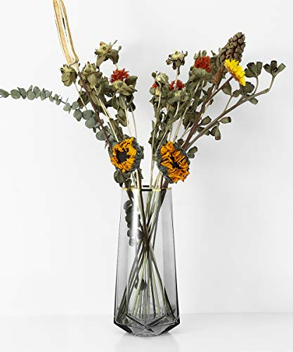 Lewondr Glasvase, 22 cm Hohe Kristall Klar Zylindervase Deko Vase Blumenvase mit Gold Linie, Dekoration für Büro Home Küche, Geschenk für Hochzeit Weihnachten Einweihung - Hellgrau