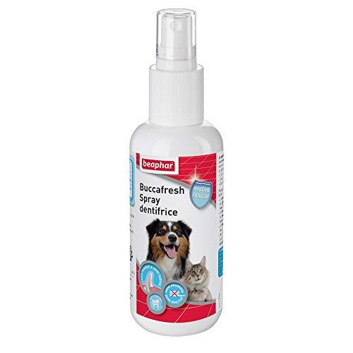 BEAPHAR - Spray dentifrice – Nettoyage des dents du chien et du chat sans brossage ni rinçage – Élimine la plaque dentaire – Empêche la formation de tartre – Combat la mauvaise haleine – Flacon 150 ml
